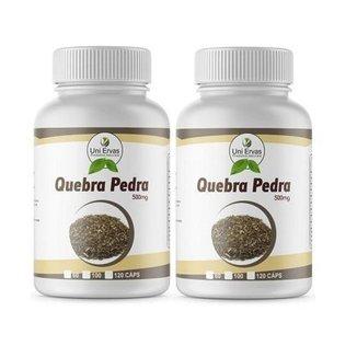 2x Chá Quebra Pedra Original 500mg Uniervas 100cps