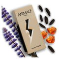 Animale Gold Animale - Perfume Masculino - EDT 100ml