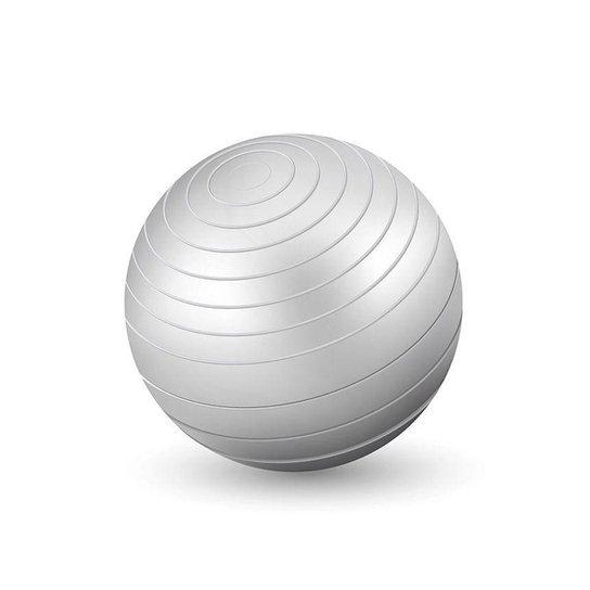 Bola Ginastica 65cm Western - Cinza