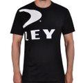 Camiseta Oakley Big Ellipse Masculina
