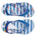Chinelo Infantil Klin Acqua Print Azul Bebê e Azul Royal