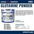 Glutamina Powder 100% Pure 300g Refil - Profit