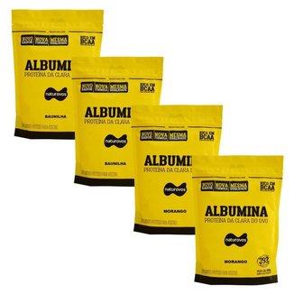 Kit 4X Albumina - 500g Refil 2 Baunilha e 2 Morango - Naturovos