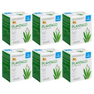 Kit 6 Plantago Ovata (psyllium) - Regula Intestino - 10 Sachês