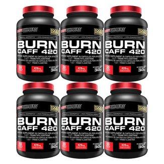KIT - 6x Cafeína Burn Caff 420 60caps - Bodybuilders