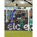 Livro Da Vitória à Conquista - Palmeiras Tricampeão da Copa do Brasil