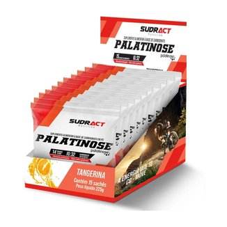PALATINOSE 15 SACHES - SUDRACT (TANGERINA)